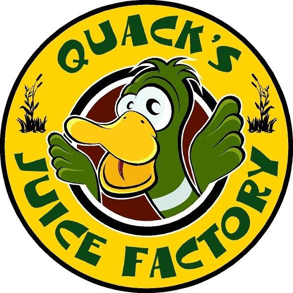 Logo concentré goose diy